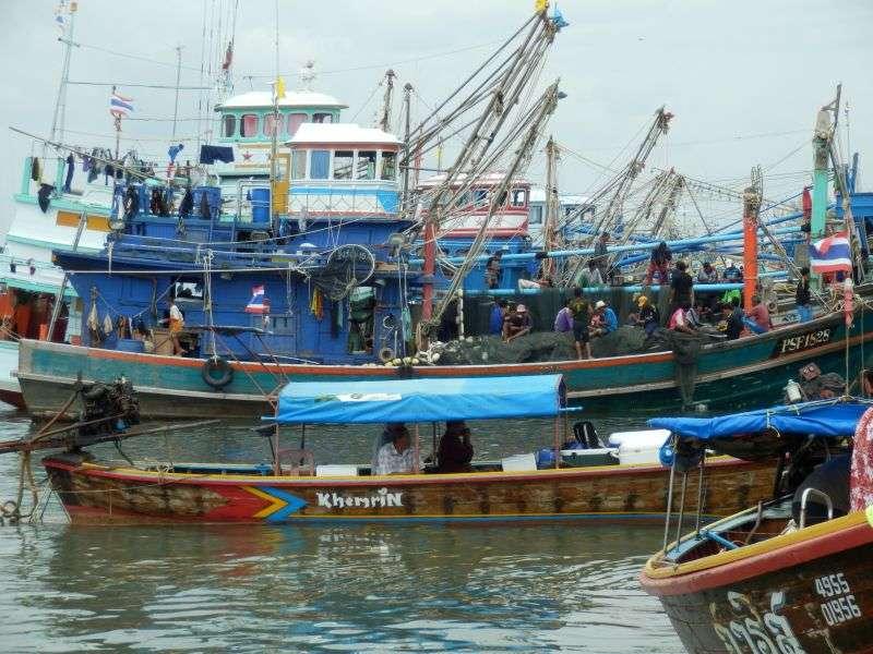 Fischereihafen Pakbara