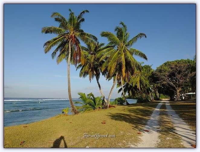 фото кокосовые острова